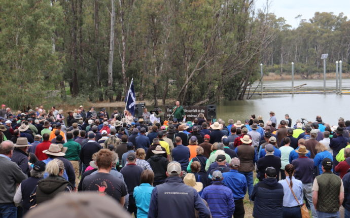 David Littleproud thrown in effigy off the bridge at Tocumwal (Video)